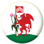 Cardiff Town / City Flag 25mm Keyring